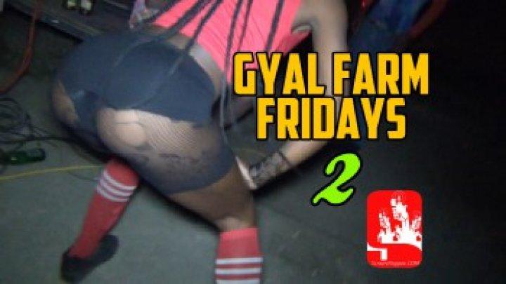 GYAL FARM 2