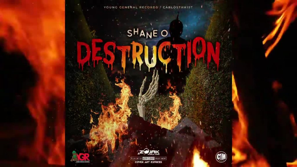 Shane O Destruction Official Audio.mp4